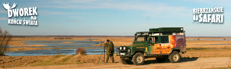 Biebrzańskie Safari